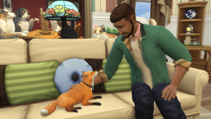 CatsDogs-Review-FoxPetting